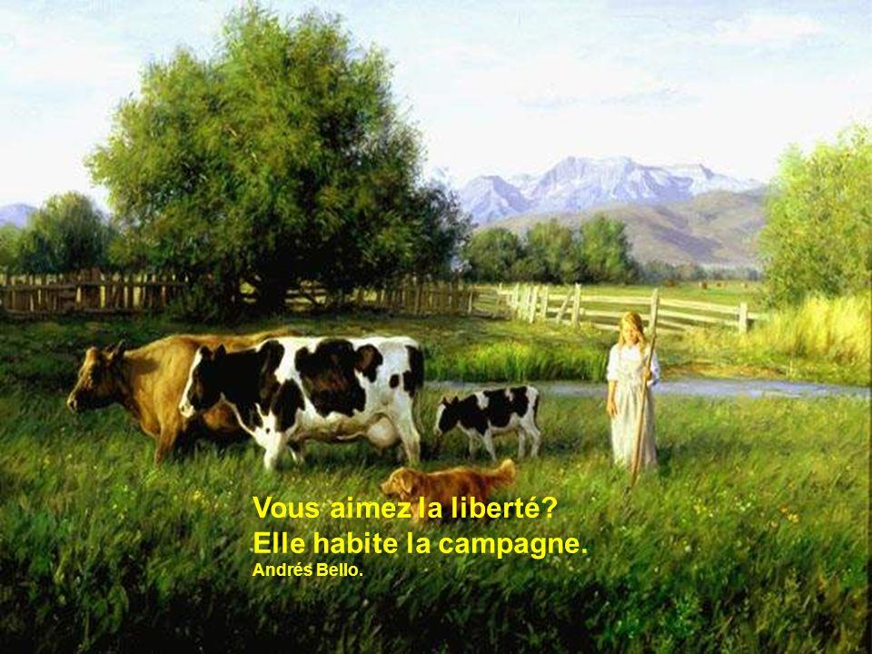 Vous aimez la liberté? Elle habite la campagne. Andrés Bello.