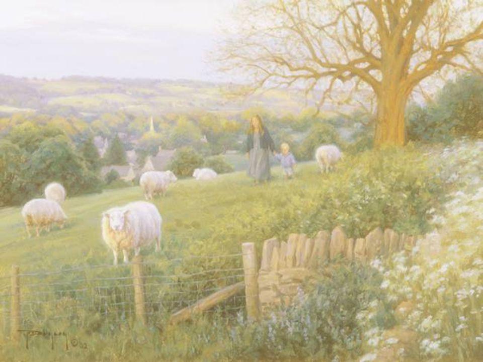 Il ne sagit pas de peindre la vie. Il sagit de rendre vivante la peinture. Pierre Bonnard.
