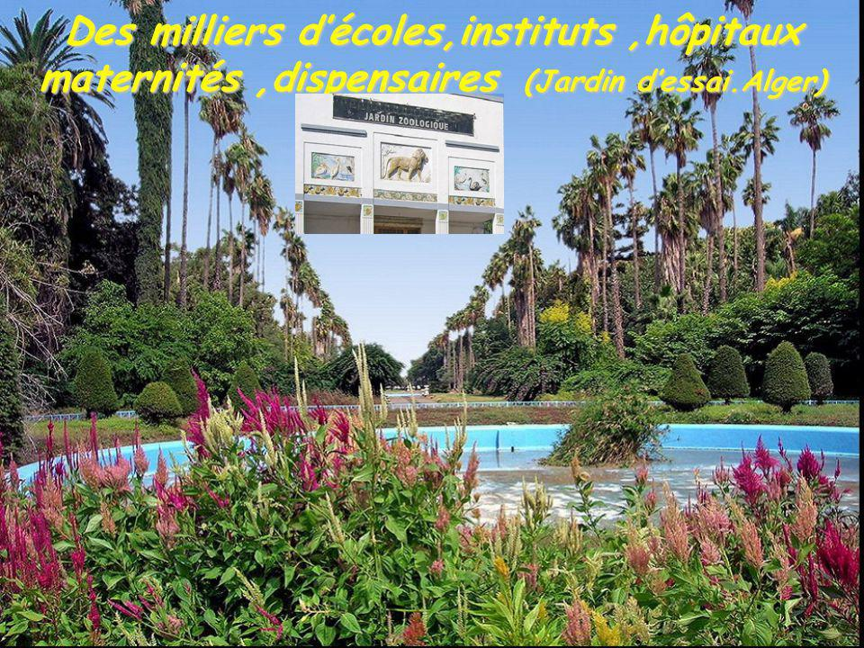 Des milliers décoles,instituts,hôpitaux maternités,dispensaires (Jardin dessai.Alger)