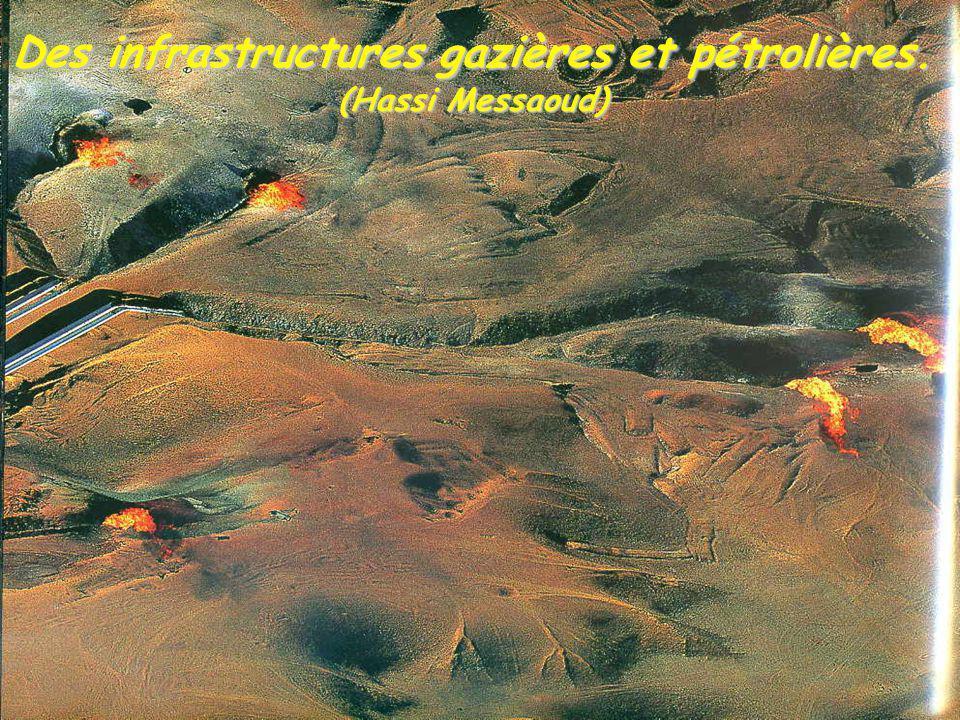 Des infrastructures gazières et pétrolières. (Hassi Messaoud)