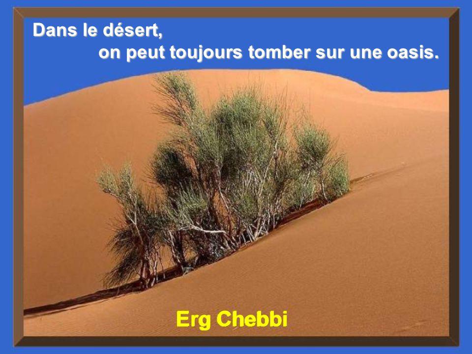 Sahara, Maroc Pour le tribut que le désert fait payer à lhomme, il donne des compensations, de grandes respirations, un profond sommeil, et la communion avec les étoiles.