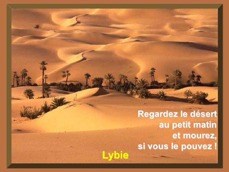 Sahara Le courage de la goutte deau, cest quelle ose tomber dans le désert.