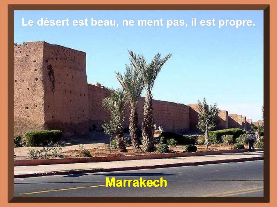 Fès Le simple fait derrer dans le désert nimplique pas lexistence de la terre promise
