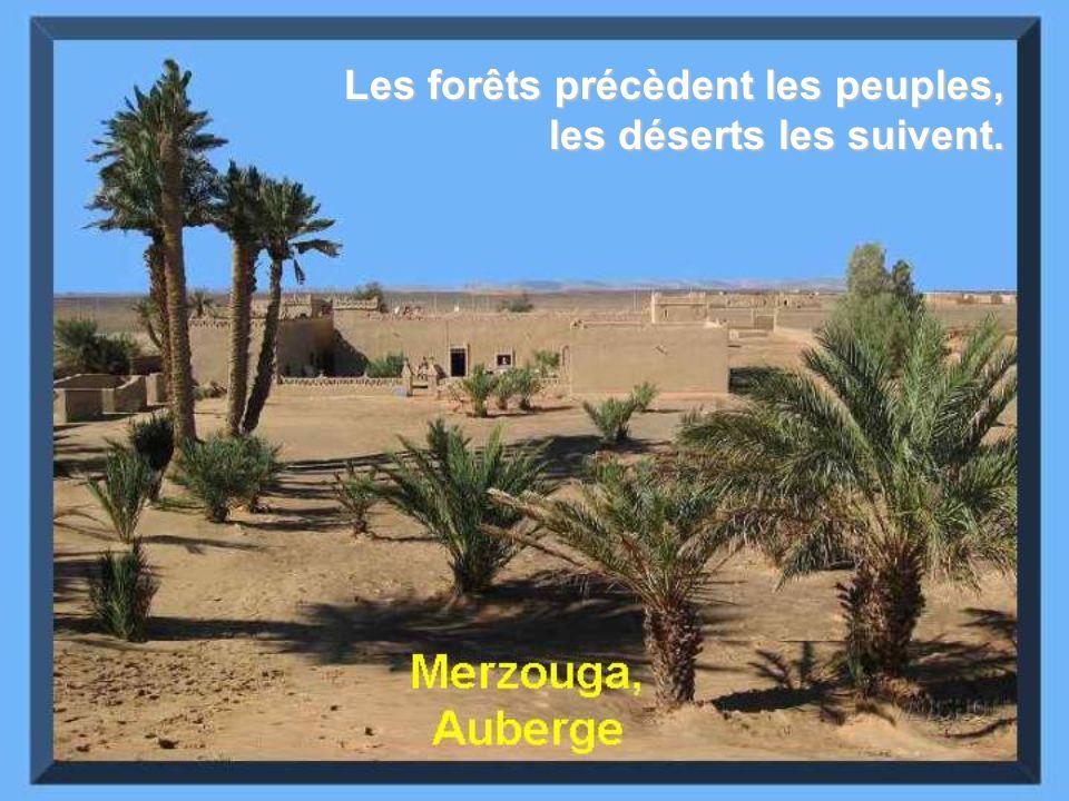 Les forêts précèdent les peuples, les déserts les suivent.