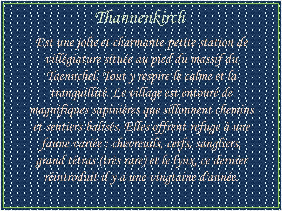 Est une jolie et charmante petite station de villégiature située au pied du massif du Taennchel.
