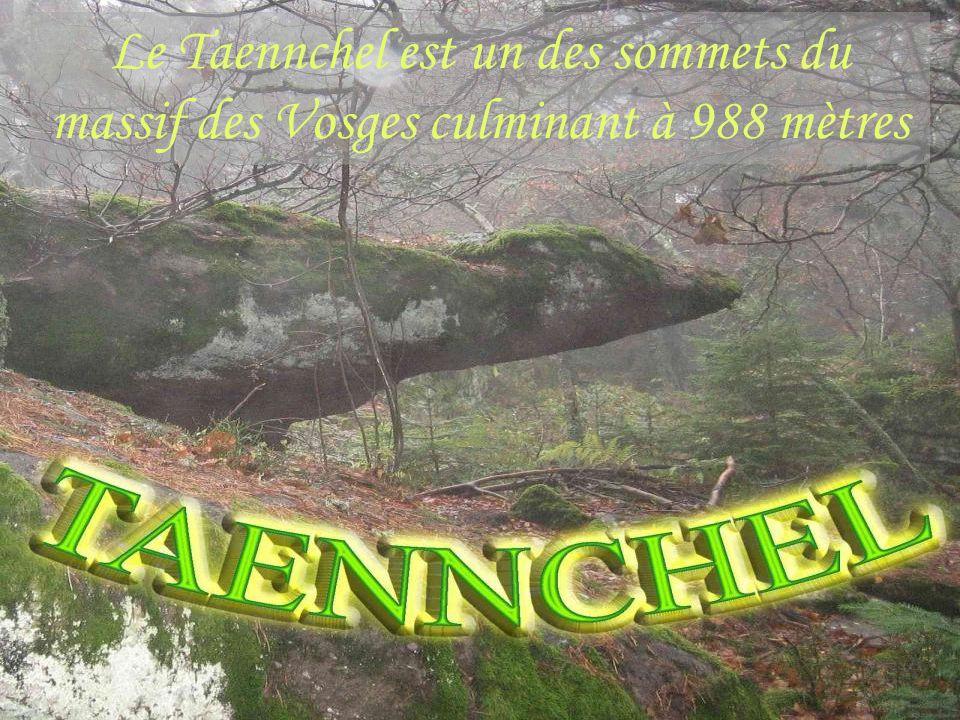 Le Taennchel est un des sommets du massif des Vosges culminant à 988 mètres