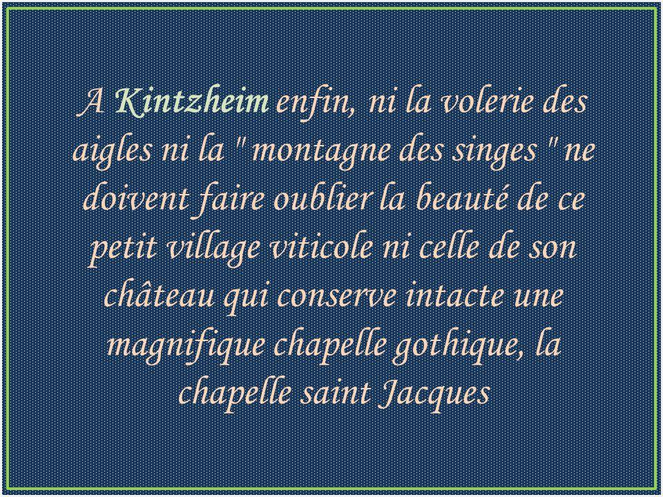 A Kintzheim enfin, ni la volerie des aigles ni la montagne des singes ne doivent faire oublier la beauté de ce petit village viticole ni celle de son château qui conserve intacte une magnifique chapelle gothique, la chapelle saint Jacques