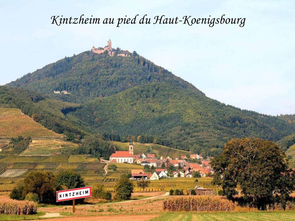 Kintzheim au pied du Haut-Koenigsbourg
