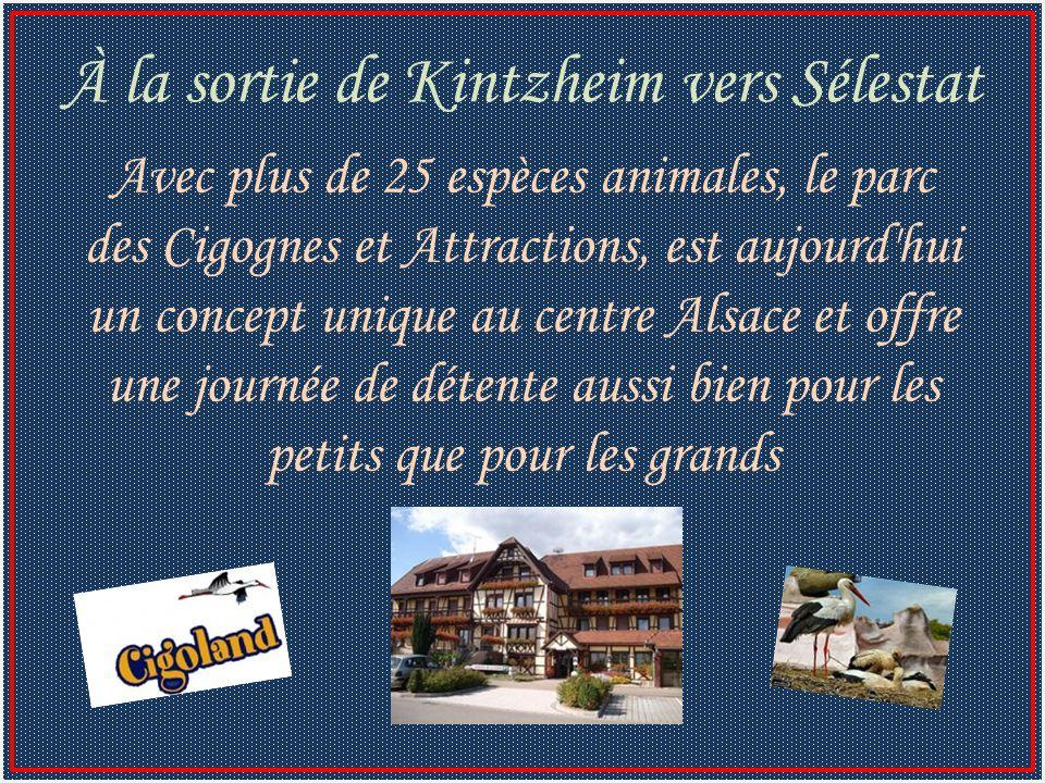 Avec plus de 25 espèces animales, le parc des Cigognes et Attractions, est aujourd hui un concept unique au centre Alsace et offre une journée de détente aussi bien pour les petits que pour les grands À la sortie de Kintzheim vers Sélestat