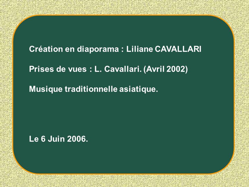 Création en diaporama : Liliane CAVALLARI Prises de vues : L. Cavallari. (Avril 2002) Musique traditionnelle asiatique. Le 6 Juin 2006.