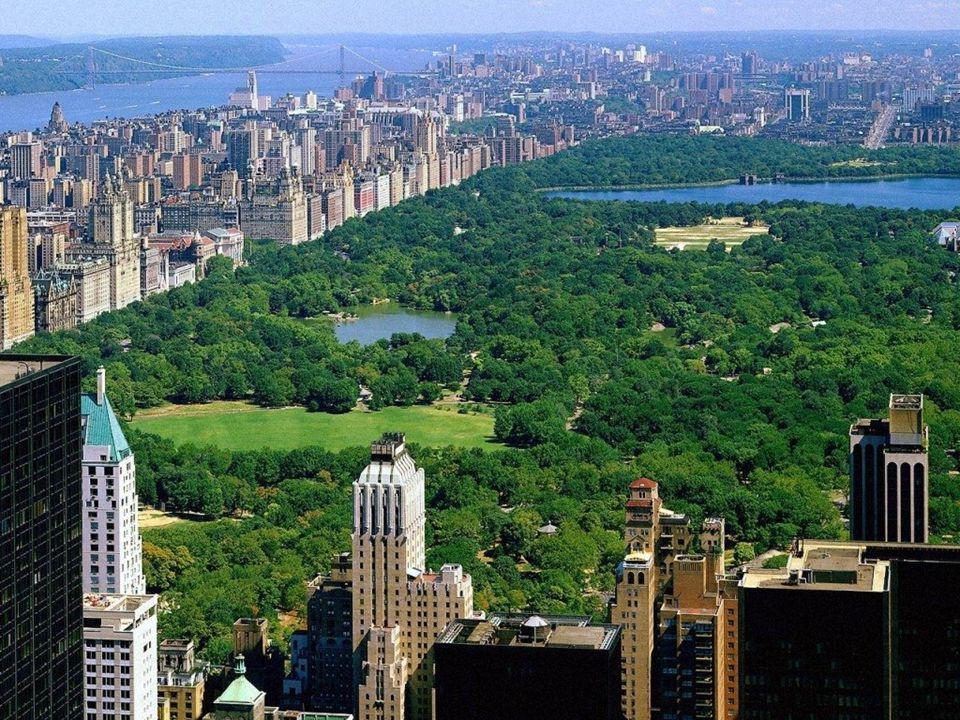 Central Park (littéralement « Parc central ») est un espace vert d'une superficie de 341 hectares (3,41 km², environ 4 km sur 800 mètres), situé dans