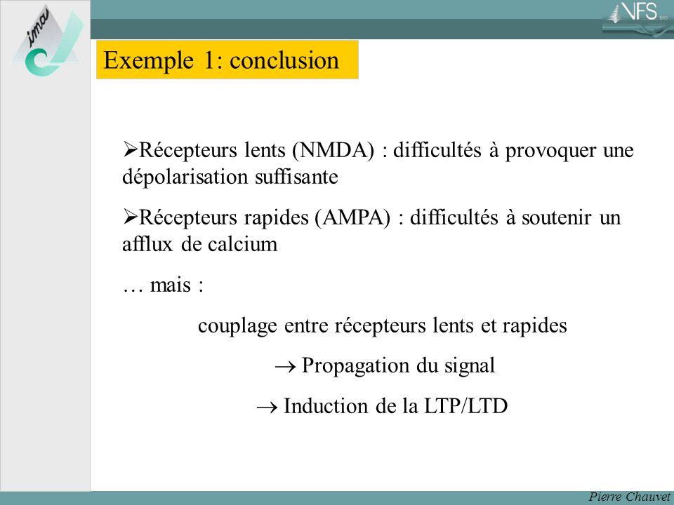 Pierre Chauvet Exemple 1: conclusion Récepteurs lents (NMDA) : difficultés à provoquer une dépolarisation suffisante Récepteurs rapides (AMPA) : difficultés à soutenir un afflux de calcium … mais : couplage entre récepteurs lents et rapides Propagation du signal Induction de la LTP/LTD