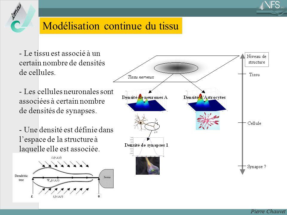 Pierre Chauvet Modélisation continue du tissu - Le tissu est associé à un certain nombre de densités de cellules.