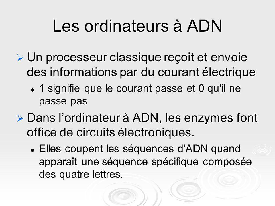 Les ordinateurs à ADN Un processeur classique reçoit et envoie des informations par du courant électrique Un processeur classique reçoit et envoie des