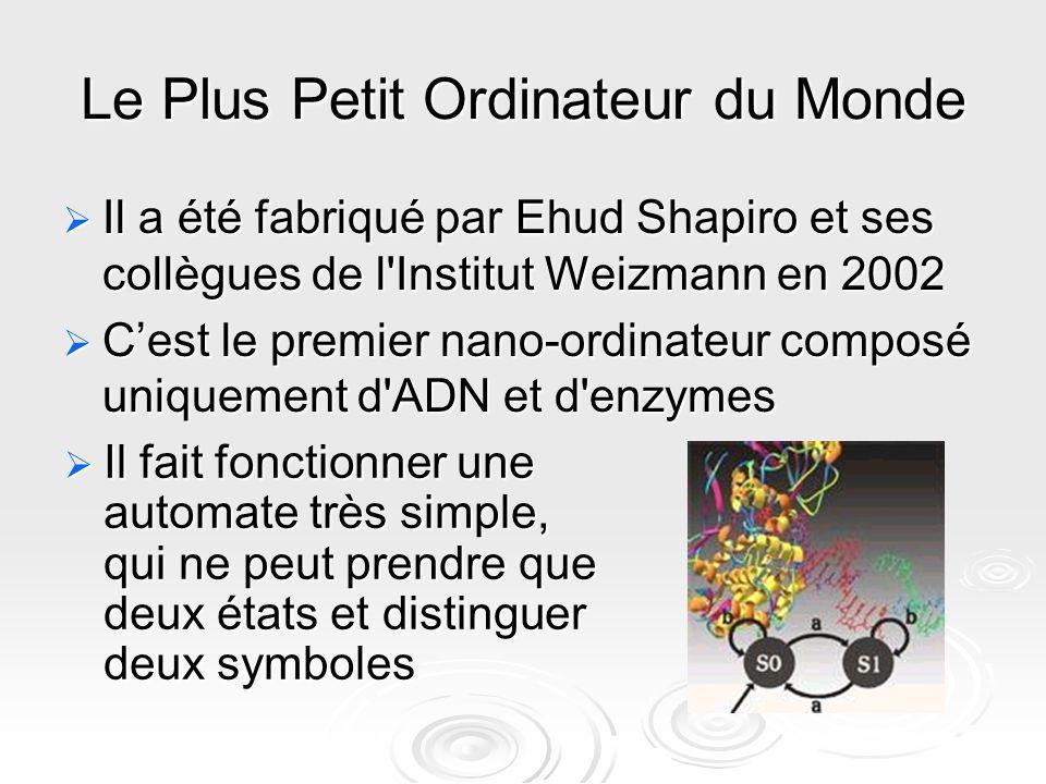 Le Plus Petit Ordinateur du Monde Il a été fabriqué par Ehud Shapiro et ses collègues de l'Institut Weizmann en 2002 Il a été fabriqué par Ehud Shapir