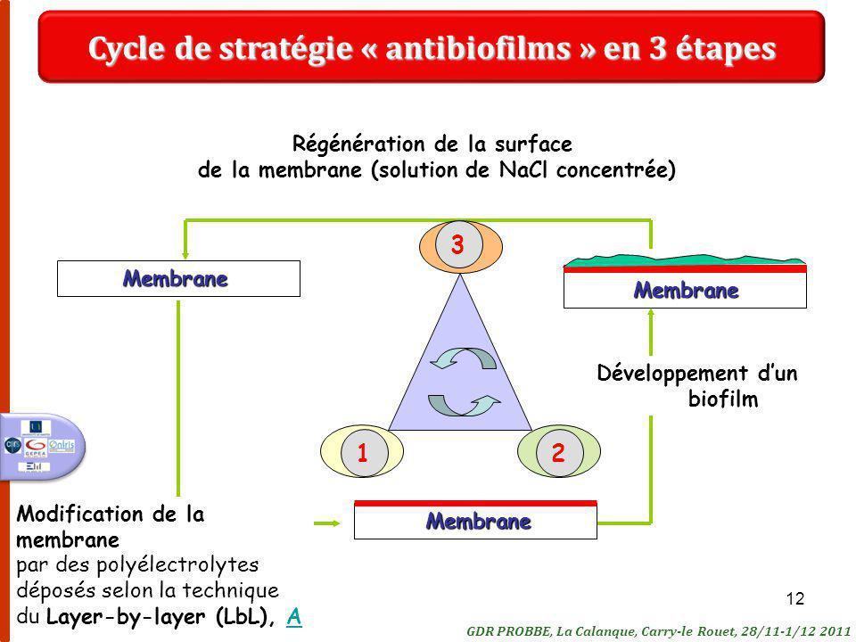 12Membrane Membrane Modification de la membrane par des polyélectrolytes déposés selon la technique du Layer-by-layer (LbL), AA Développement dun biofilm Régénération de la surface de la membrane (solution de NaCl concentrée)Membrane Cycle de stratégie « antibiofilms » en 3 étapes 321 GDR PROBBE, La Calanque, Carry-le Rouet, 28/11-1/12 2011