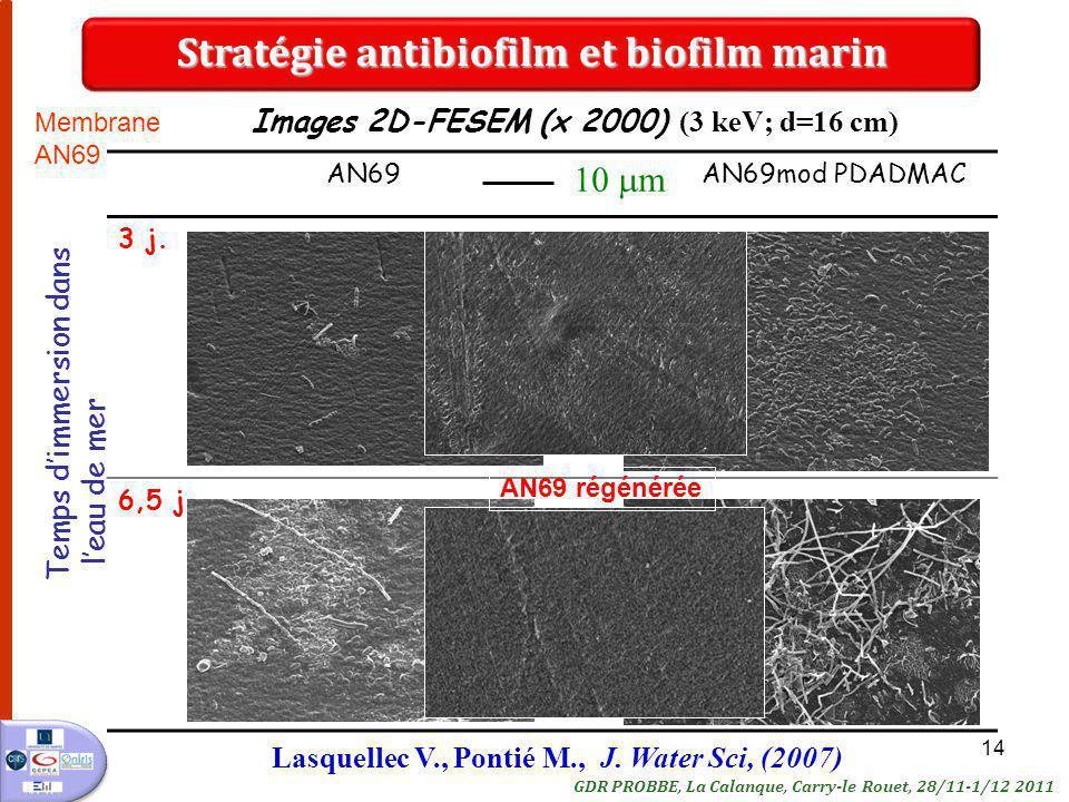 14 AN69 AN69mod PDADMAC 3 j. 6,5 j. Images 2D-FESEM (x 2000) (3 keV; d=16 cm) Temps dimmersion dans leau de mer 10 m AN69 régénérée Stratégie antibiof