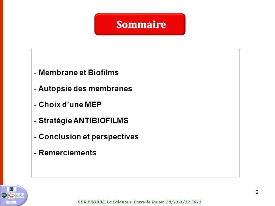 2 - Membrane et Biofilms - Autopsie des membranes - Choix dune MEP - Stratégie ANTIBIOFILMS - Conclusion et perspectives - Remerciements Sommaire GDR PROBBE, La Calanque, Carry-le Rouet, 28/11-1/12 2011