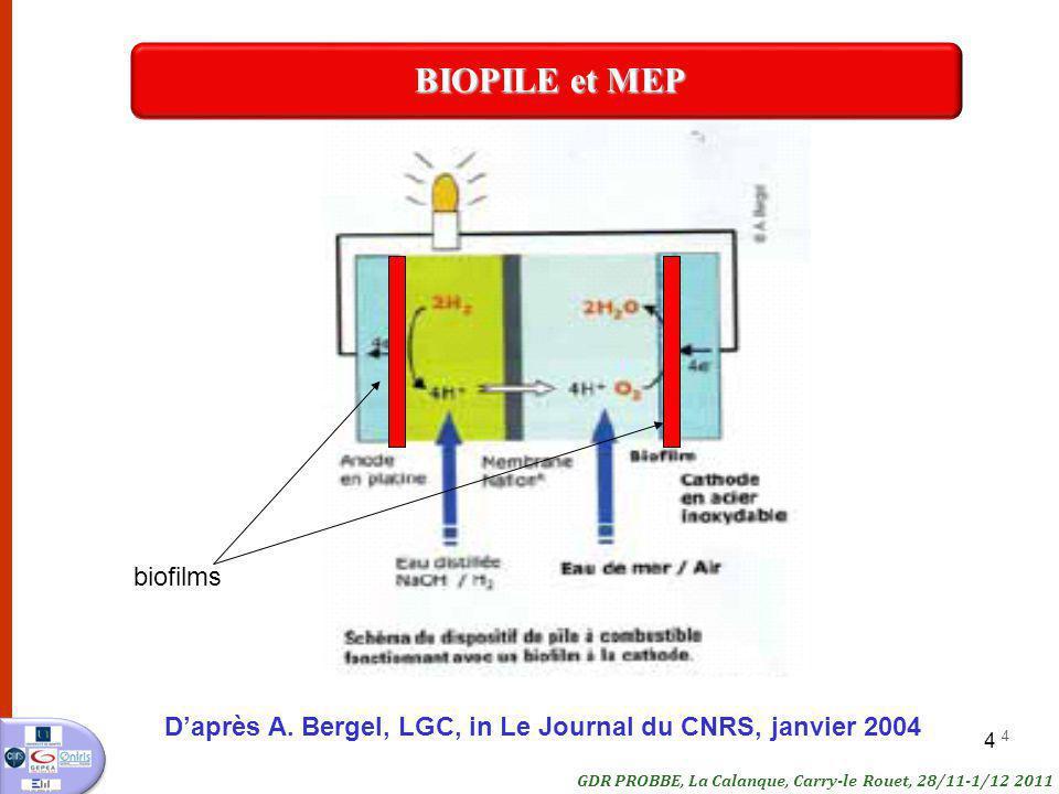 4 4 Daprès A. Bergel, LGC, in Le Journal du CNRS, janvier 2004 GDR PROBBE, La Calanque, Carry-le Rouet, 28/11-1/12 2011 BIOPILE et MEP biofilms