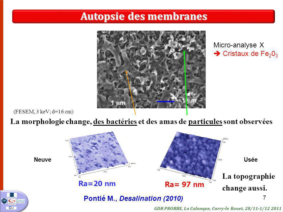 7 Ra=20 nm La morphologie change, des bactéries et des amas de particules sont observées Ra= 97 nm 1 m Autopsie des membranes NeuveUsée (FESEM, 3 keV;