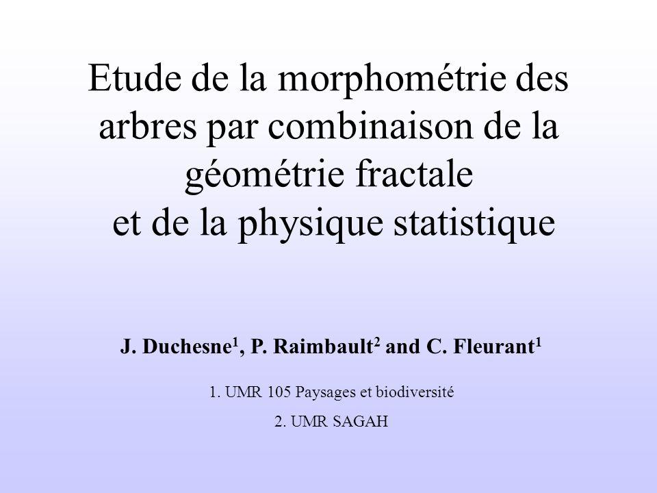 Etude de la morphométrie des arbres par combinaison de la géométrie fractale et de la physique statistique J.