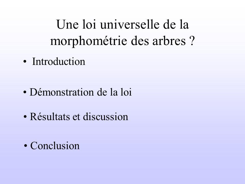 Une loi universelle de la morphométrie des arbres .