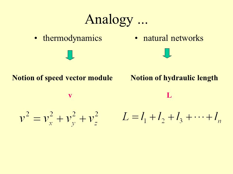 Analogy between thermodynamics and natural networks thermodynamicsnatural networks Maxwell approachOur approach