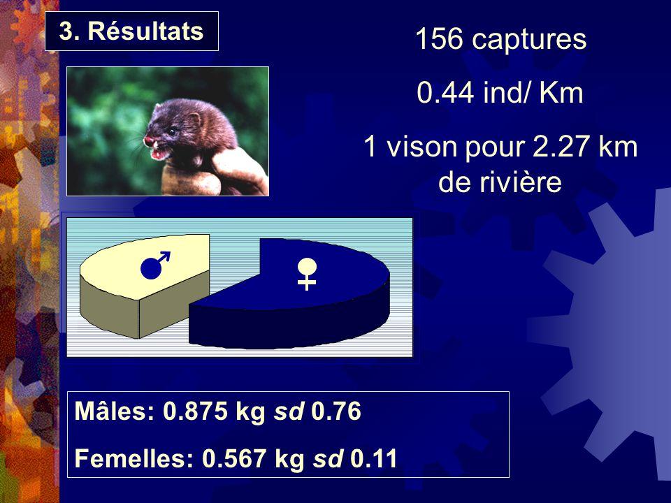 156 captures 0.44 ind/ Km 1 vison pour 2.27 km de rivière Mâles: 0.875 kg sd 0.76 Femelles: 0.567 kg sd 0.11 3. Résultats
