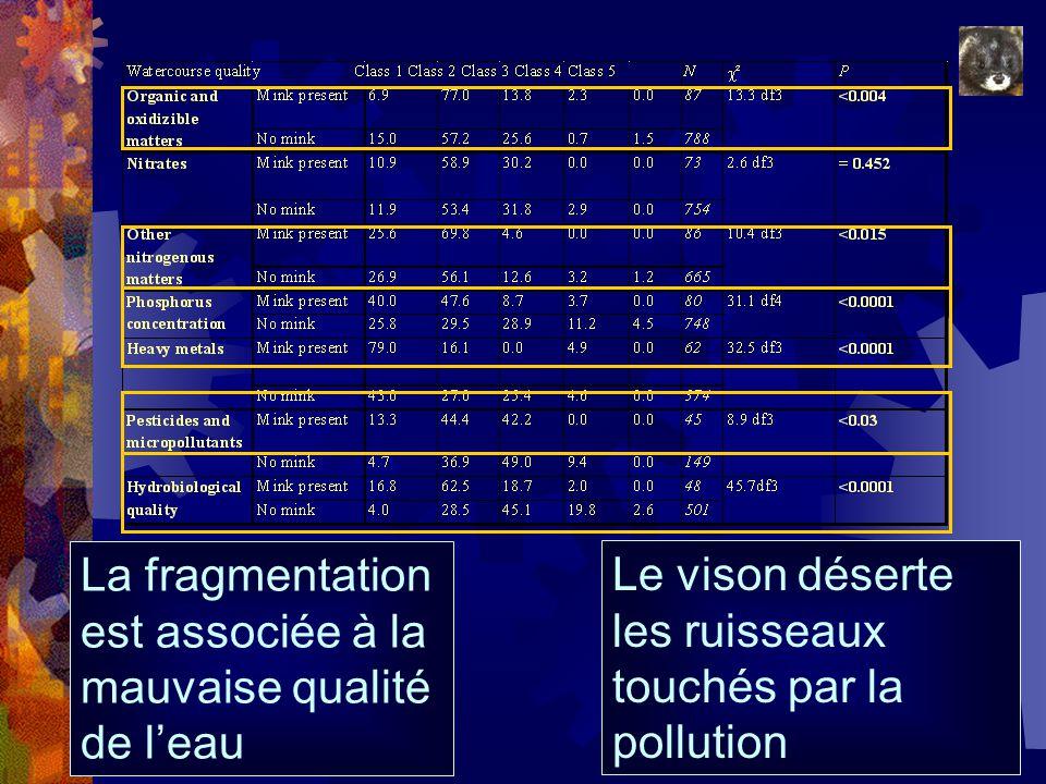 La fragmentation est associée à la mauvaise qualité de leau Le vison déserte les ruisseaux touchés par la pollution