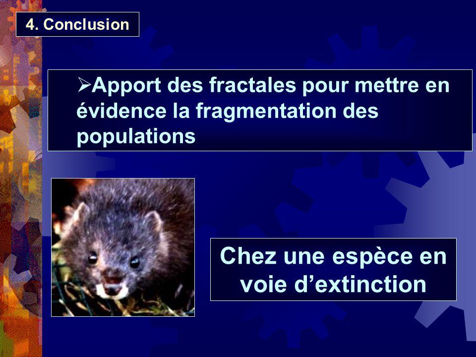 4. Conclusion Apport des fractales pour mettre en évidence la fragmentation des populations Chez une espèce en voie dextinction