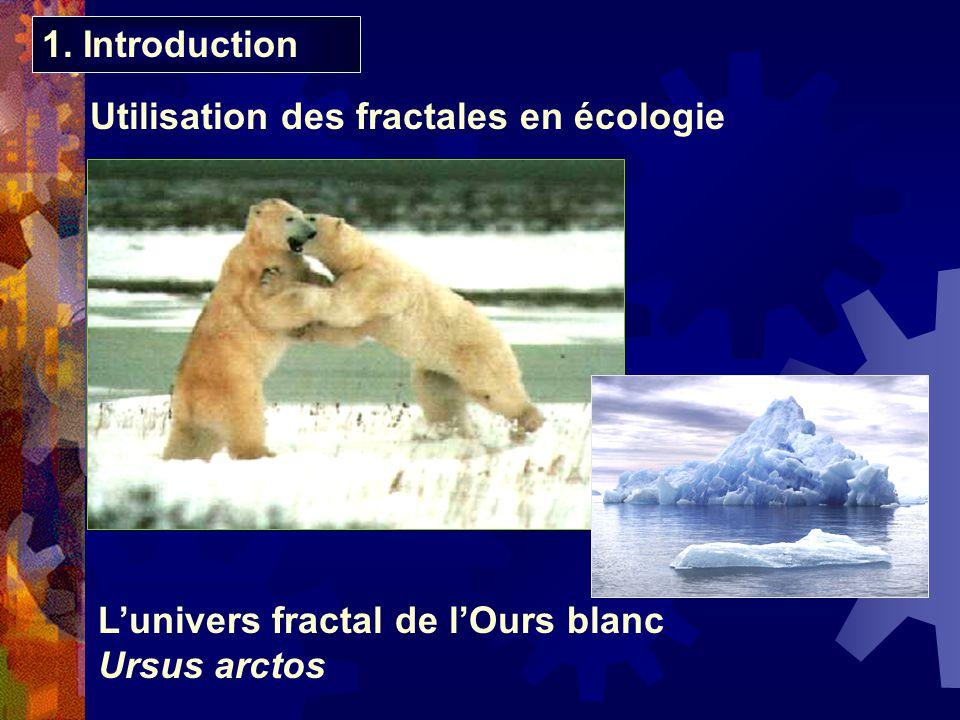 Utilisation des fractales en écologie 1. Introduction Lunivers fractal de lOurs blanc Ursus arctos