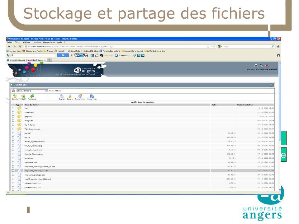Stockage et partage des fichiers UA Stockage 60 To Partage Institutionnel Fichier Stockage Individuel Fichier Interface Accès | web VPN Canal stockage