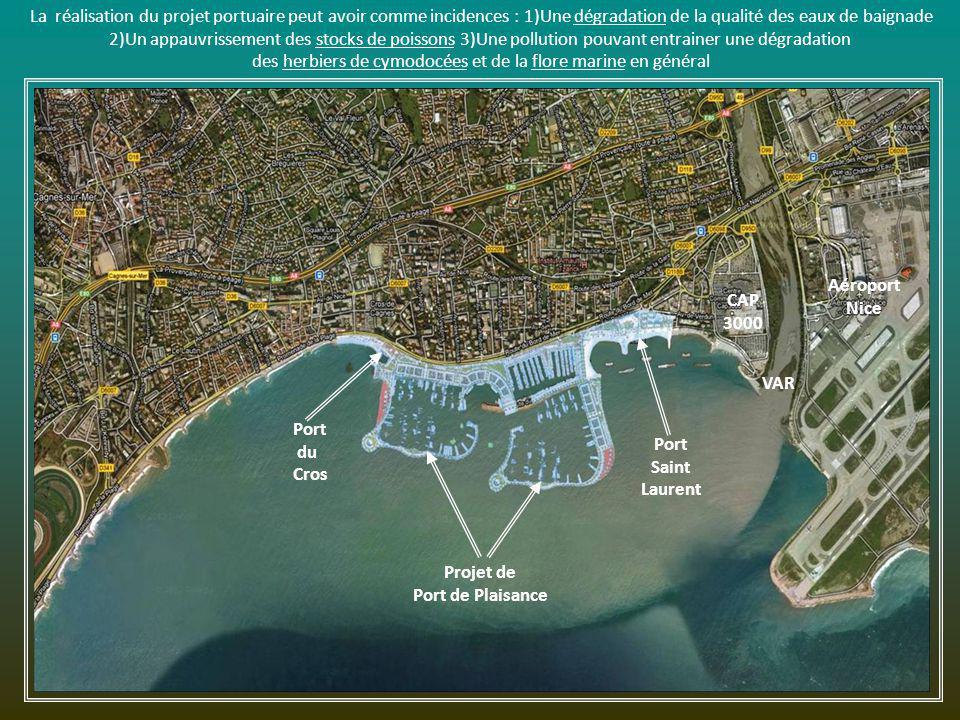 Et en plus,projet de Port de plaisance !!