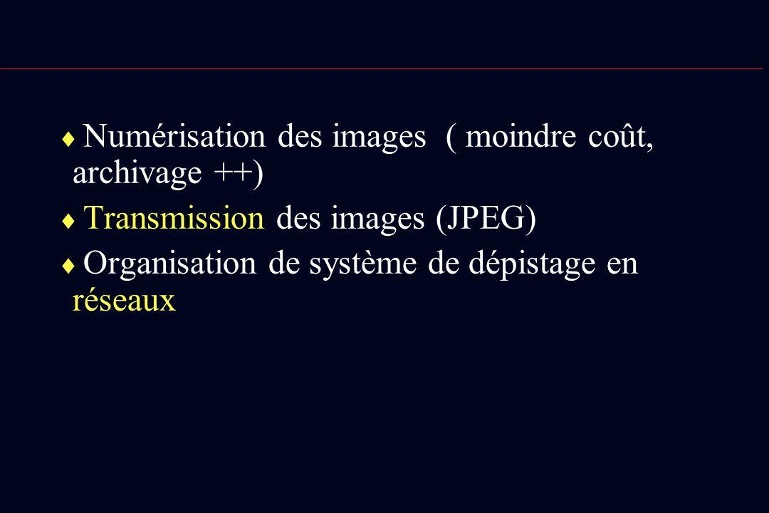 Numérisation des images ( moindre coût, archivage ++) Transmission des images (JPEG) Organisation de système de dépistage en réseaux