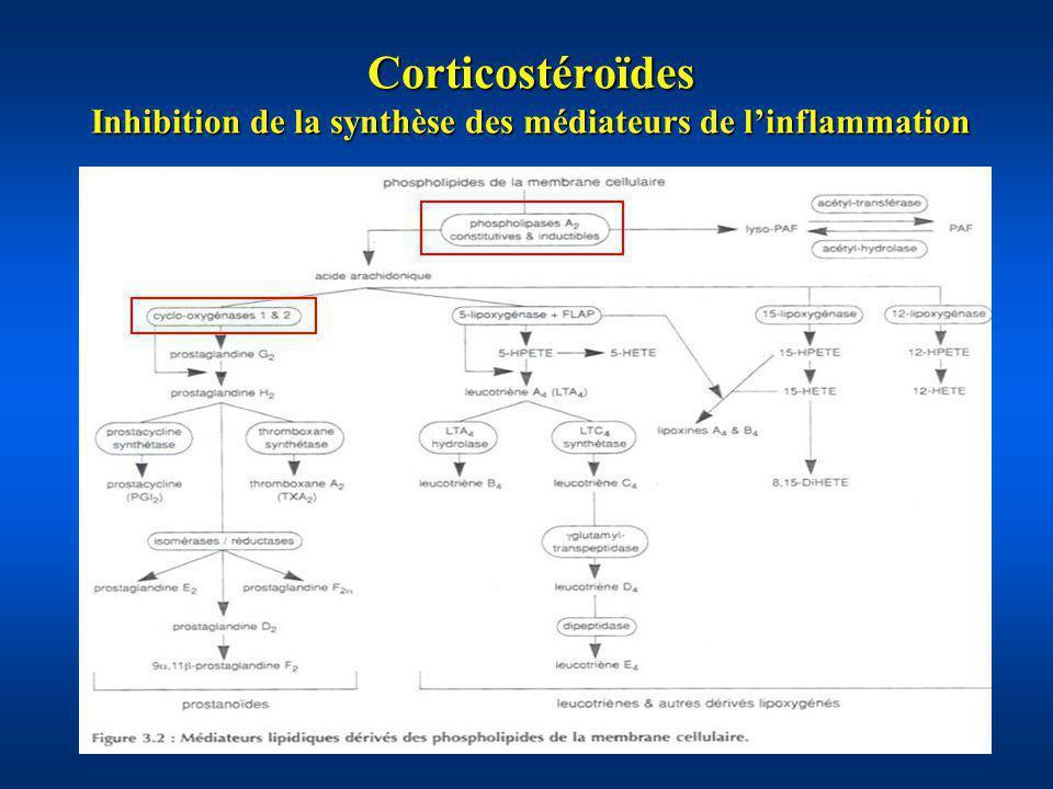 Corticostéroïdes Inhibition de la synthèse des médiateurs de linflammation