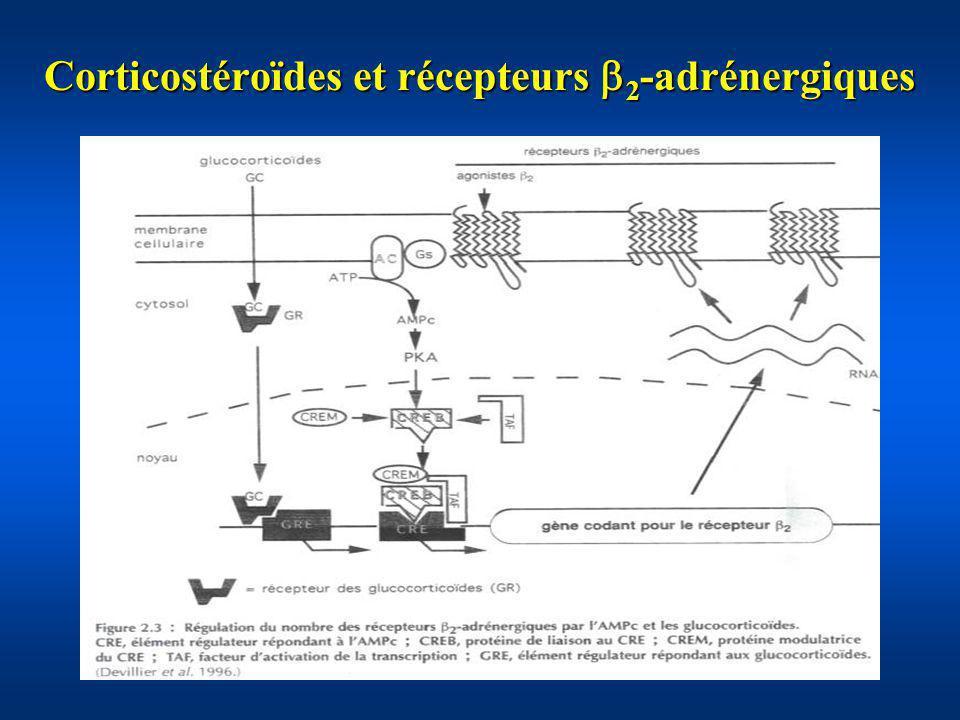 Corticostéroïdes et récepteurs 2 -adrénergiques