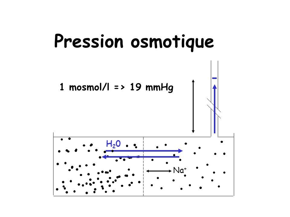 Pression osmotique Na + H20H20 1 mosmol/l => 19 mmHg