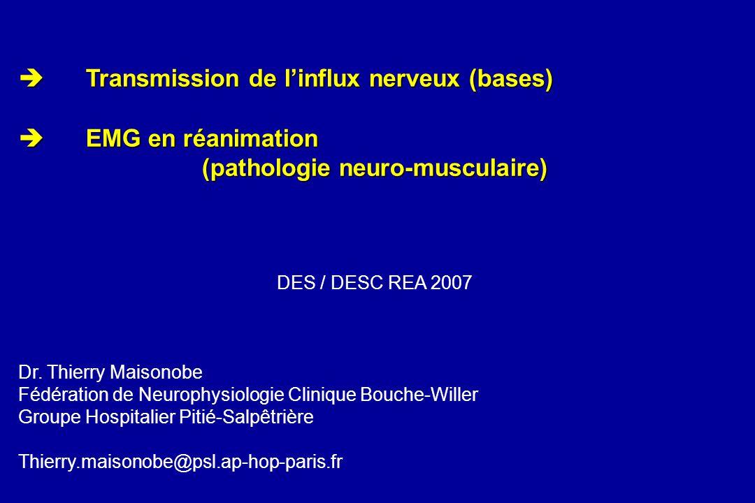 Transmission de linflux nerveux (bases) Transmission de linflux nerveux (bases) EMG en réanimation EMG en réanimation (pathologie neuro-musculaire) DE