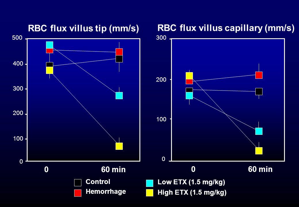 300 200 RBC flux villus tip (mm/s) RBC flux villus capillary (mm/s) 400 0 200 300 100 0 60 min 500 Control Hemorrhage Low ETX (1.5 mg/kg) High ETX (1.