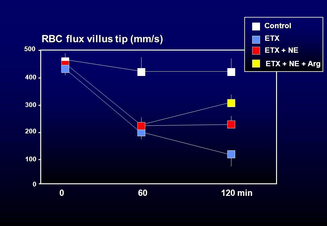 RBC flux villus tip (mm/s) 400 0 200 300 100 0 60 120 min 500ControlETX ETX + NE + Arg ETX + NE + Arg ETX + NE