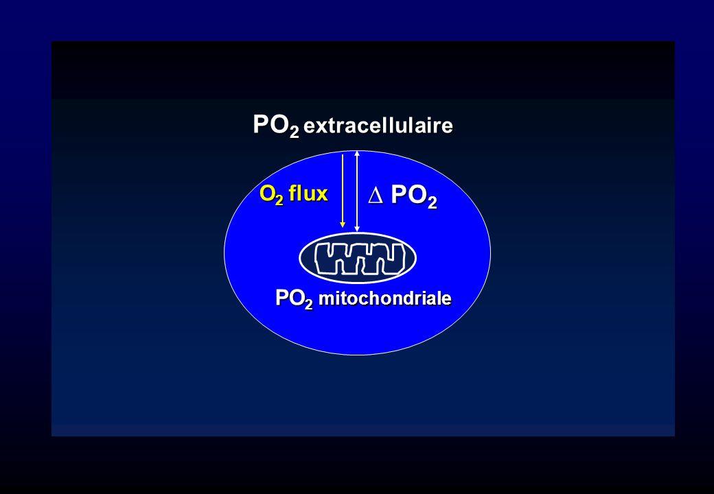 PO 2 extracellulaire PO 2 mitochondriale O 2 flux PO 2 PO 2