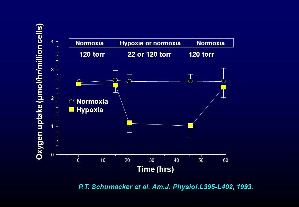 010 20 20 30 30 40 40 50 50 60 60 0 1 2 3 4 NormoxiaNormoxia Oxygen uptake (µmol/hr/million cells) Time (hrs) Hypoxia or normoxia 120 torr 22 or 120 t