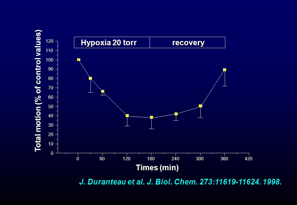 060120180240300360420 0 10 20 30 40 50 60 70 80 90 100 110 120 recovery Hypoxia 20 torr Hypoxia 20 torr Total motion (% of control values) Times (min)