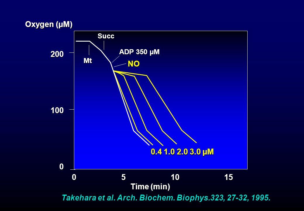 Takehara et al. Arch. Biochem. Biophys.323, 27-32, 1995. Oxygen (µM) 0 5 10 15 Time (min) Time (min) 200100 0 Mt Succ ADP 350 µM NO 0.4 1.0 2.0 3.0 µM