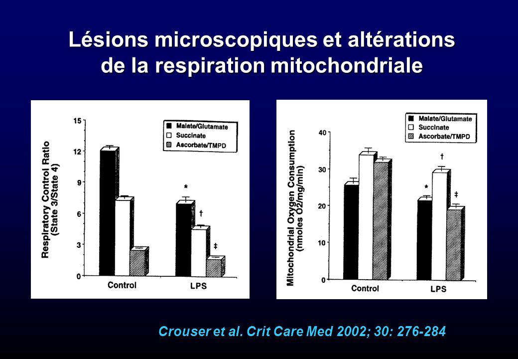 Crouser et al. Crit Care Med 2002; 30: 276-284 Lésions microscopiques et altérations de la respiration mitochondriale