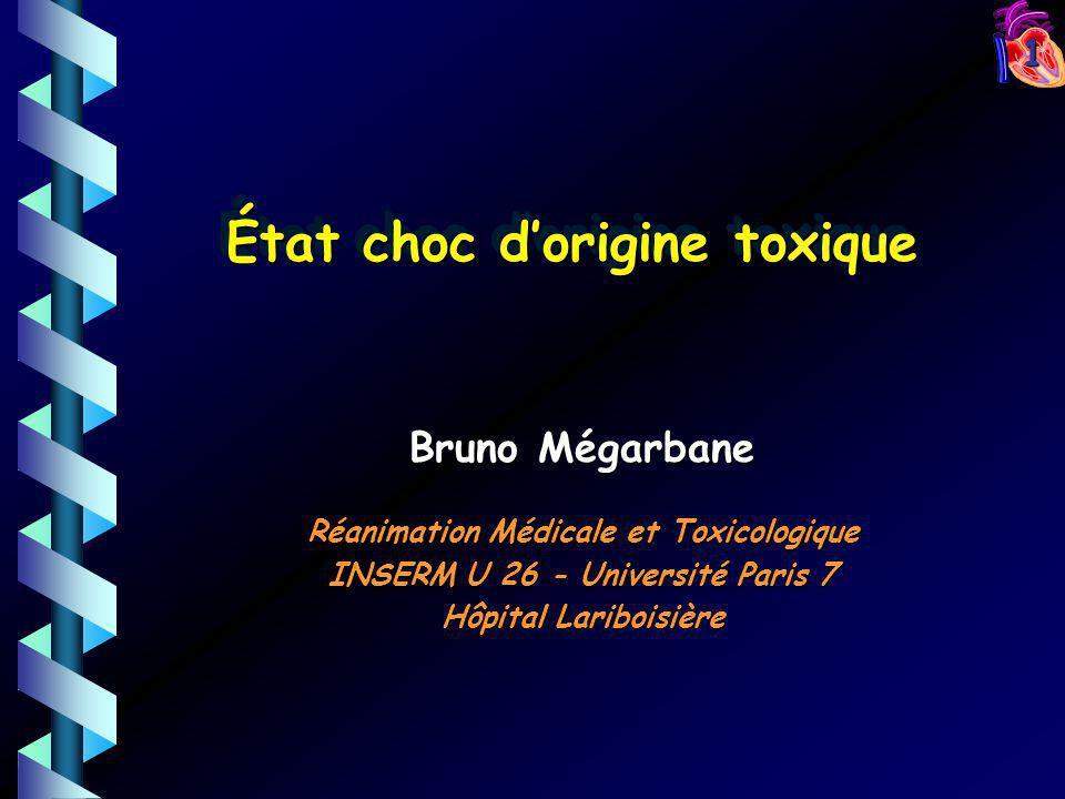 1 Bruno Mégarbane Réanimation Médicale et Toxicologique INSERM U 26 - Université Paris 7 Hôpital Lariboisière État choc dorigine toxique