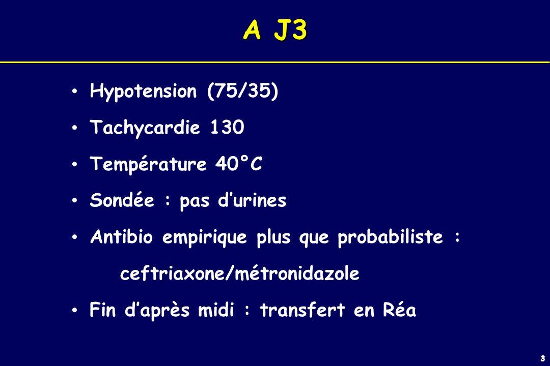 3 A J3 Hypotension (75/35) Tachycardie 130 Température 40°C Sondée : pas durines Antibio empirique plus que probabiliste : ceftriaxone/métronidazole Fin daprès midi : transfert en Réa