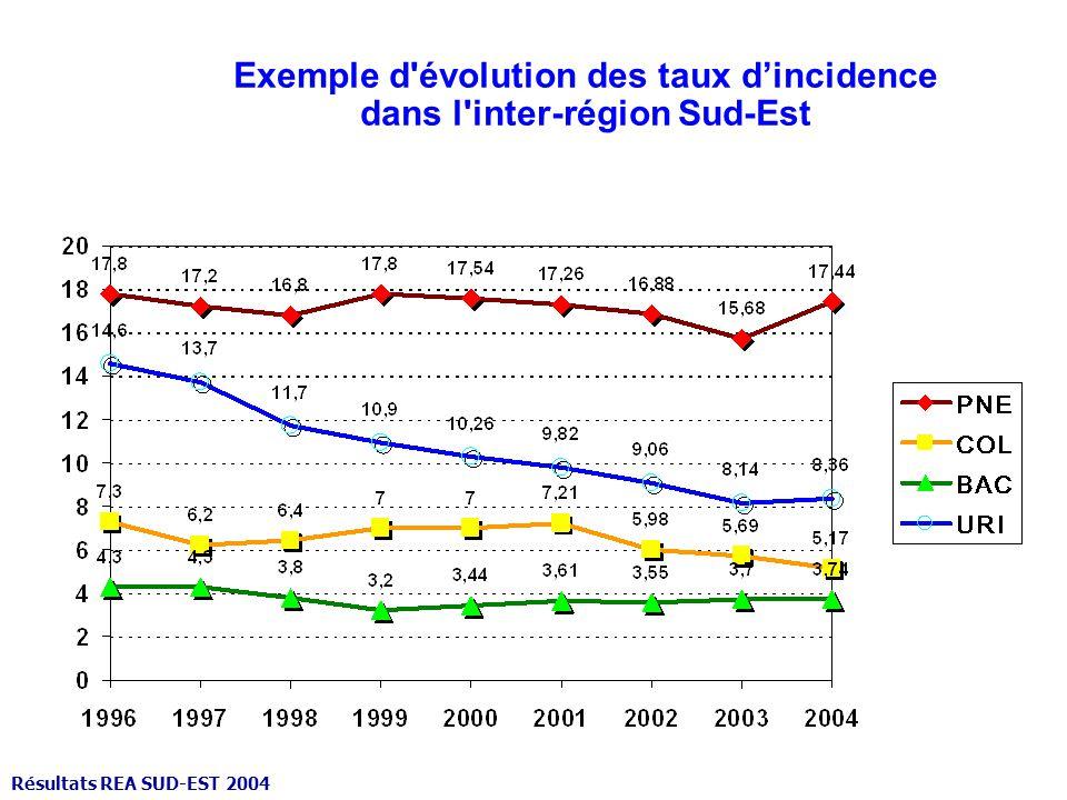 Exemple d évolution des taux dincidence dans l inter-région Sud-Est Résultats REA SUD-EST 2004