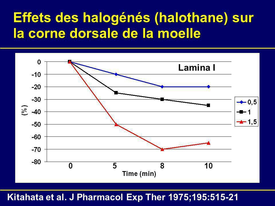 Effets des halogénés (halothane) sur la corne dorsale de la moelle 05810 Lamina I Kitahata et al. J Pharmacol Exp Ther 1975;195:515-21