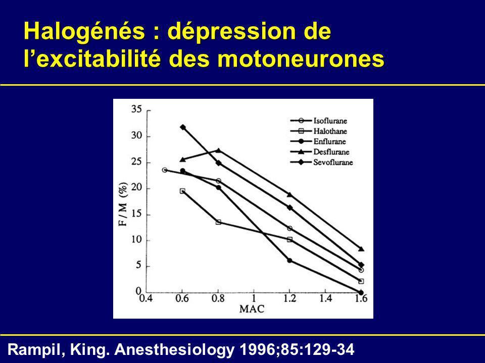 Halogénés : dépression de lexcitabilité des motoneurones Rampil, King. Anesthesiology 1996;85:129-34
